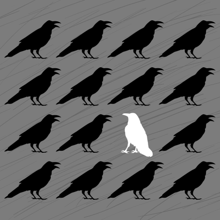 white crow among black crows